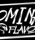 dominate-flavors-tsimiski-osmoshop-thessaloniki-liquid-banner-dominate-flavors