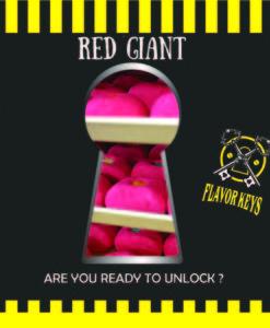 red giant-flavor-keys-osmo-ecovape-paradox-timh-agora-shake n vape-aroma-vape-mix n shot-thessaloniki